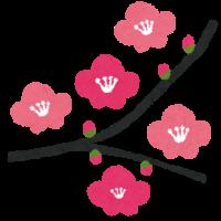 flower_ume[2]