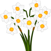 flower_5gatu01_b_06[1]
