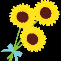 Sunflower-3[1]